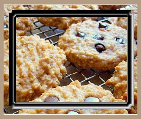 Peanut Butter Banana Oat Breakfast Cookies with Carob/Chocolate Chips